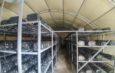Sera ve Bitki Yetiştirme Çadırı